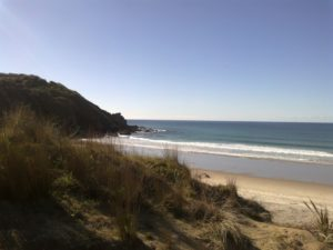 Forestry, Te Arai - surfing and snorkeling beach