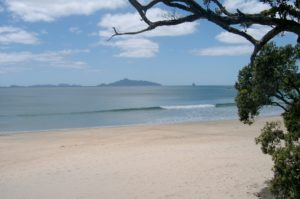 Our awesome local beaches
