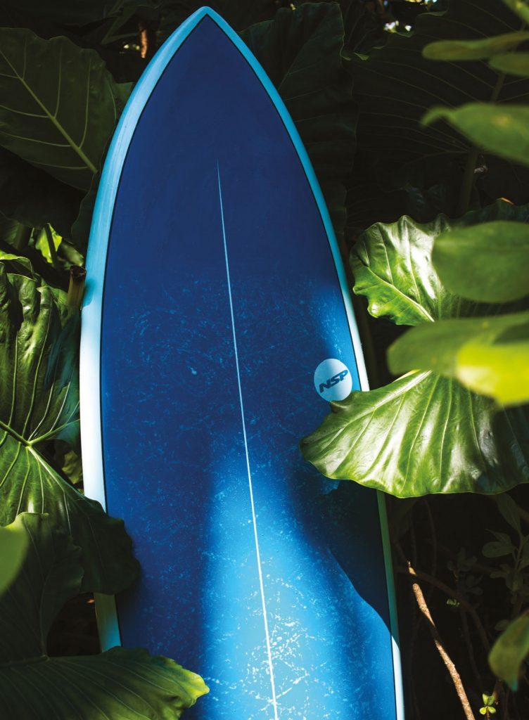 blue nsp fish
