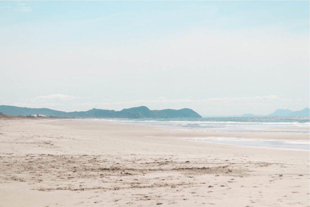 Te Arai Beach - Aotearoa Surf School